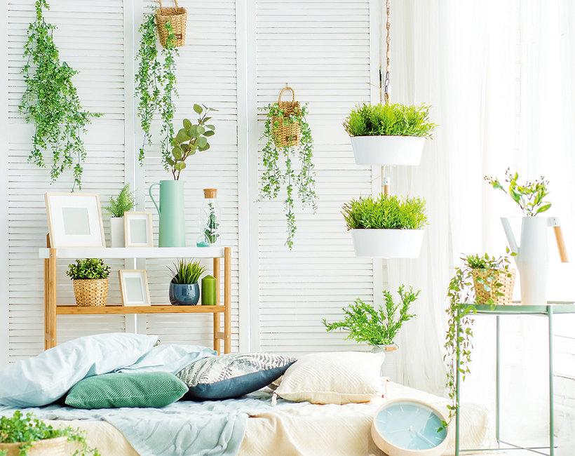 Trendy roślinne