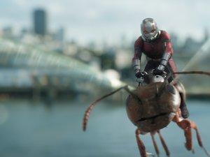 zdjęcie z filmu Ant-Man i Osa. Paul Rudd