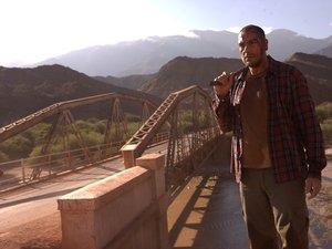zdjęcie z filmu Dzikie historie