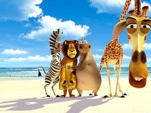 zdjęcie z filmu Madagaskar
