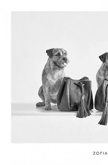 kampania Zofii Chylak z psami