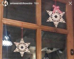 Anna Wendzikowska i Jan Bazyl znowu są parą?
