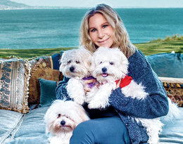 Barbra Streisand sklonowała nieżyjącego psa?! Sprawą zajęła się PETA