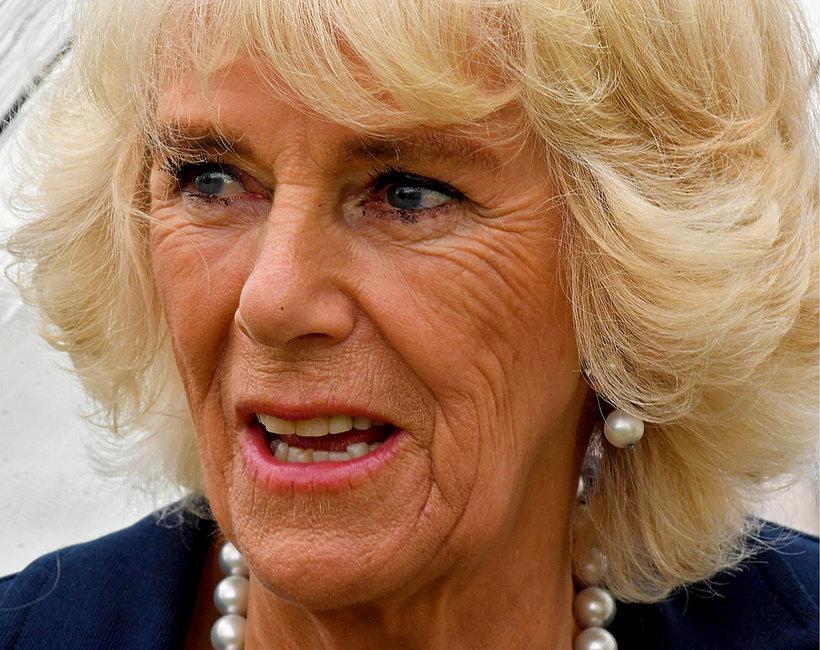 Camilla chce objąć tron. Brytyjczycy ją hejtują. Dlaczego?