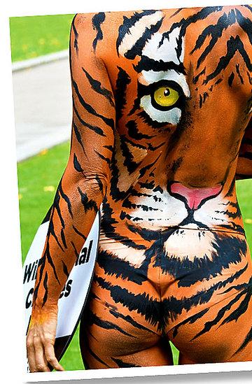 Joanna Krupa dla PETA 2017