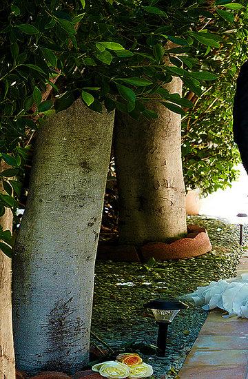 Joanna Krupa, Romain Zago, VIVA! lipiec 2013