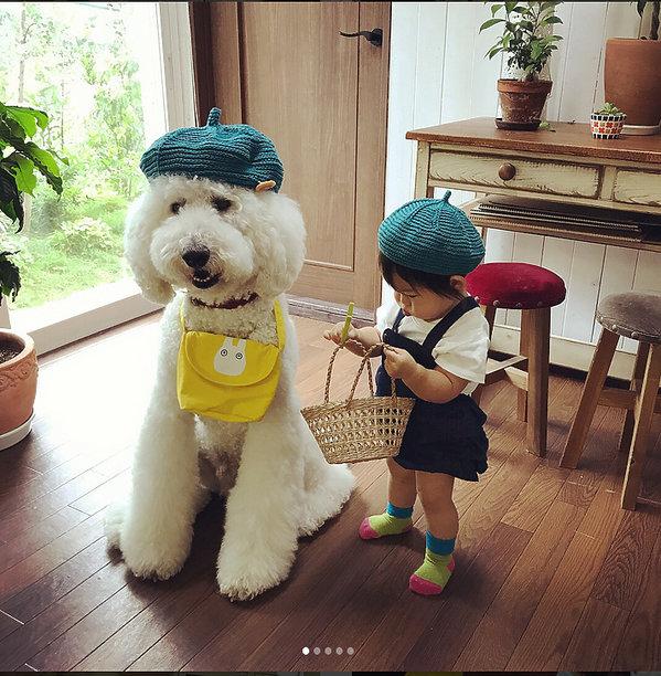 Mała dziewczynka i jej wielki przyjaciel, Mała Japonka i pudel, niezwykła więź