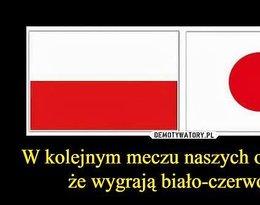 Memy przed meczem Polska-Kolumbia. Tak Polacy kpią z biało-czerwonych