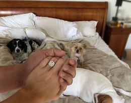 Pierścionek zaręczynowy Joanny Krupy. Ile jest warta? Jak wyglądały jej zaręczyny z Douglasem?