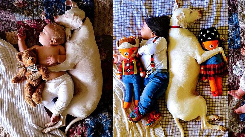 Pies znalazł spokój przy dziecku