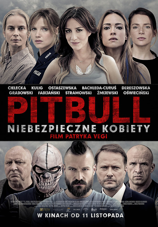Pitbull. Niebezpieczne kobiety, Box Office Polska