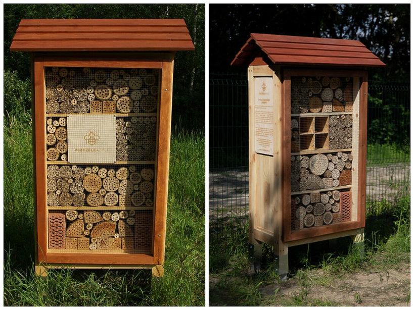 Pszczele Azyle, pszczoły