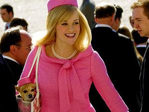 Reese Witherspoon, Legalna Blondynka, Legalna Blondynka 3