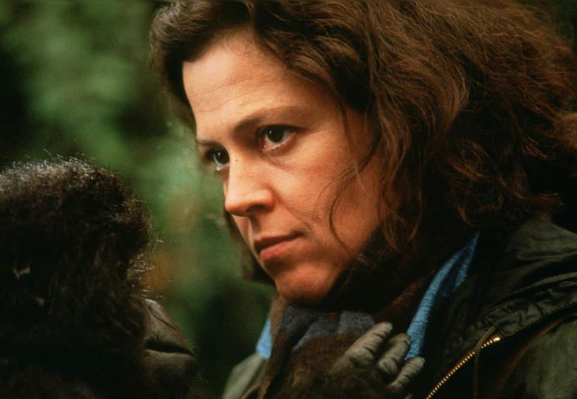 Sigourney Weaver, Dian Fossey, Goryle we mgle, 1988 rok