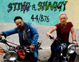 Sting i Shaggy gwiazdami 10. gali VIVA! Photo Awards!