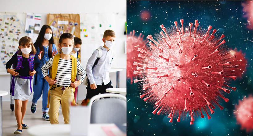 szkoła, rok szkolny, koronawirus, epidemia, pandemia