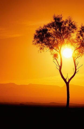 Zachody słońca Jacka Boneckiego