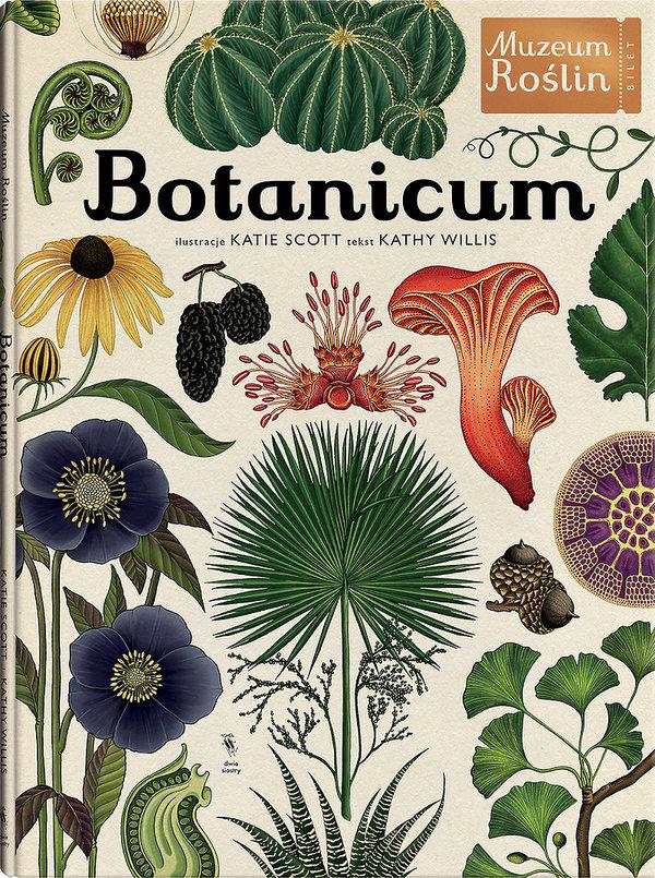 Pięknie ilustrowana książka Botanicum Muzeum Roślin, Wydawnictwo Dwie Siostry