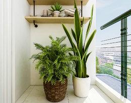Zainspiruj się najmodniejszymi pomysłami na piękny balkon!