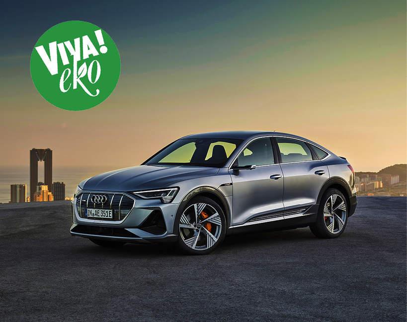 Audi Eko