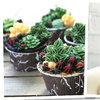 Łatwe i pyszne mini-kaktusy