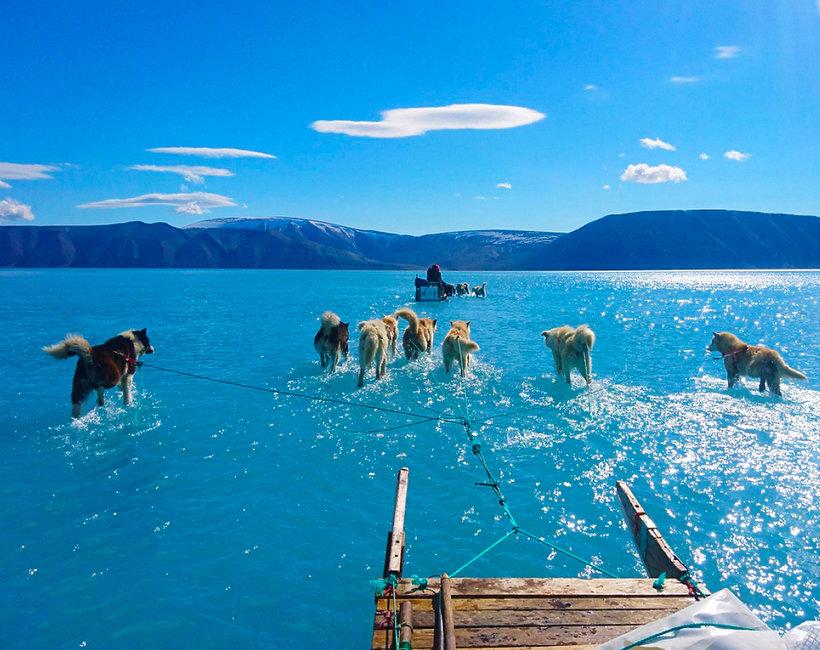 Dwa miliardy ton lodu stopniało na Grenlandii!