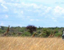 Kenia: Samburu