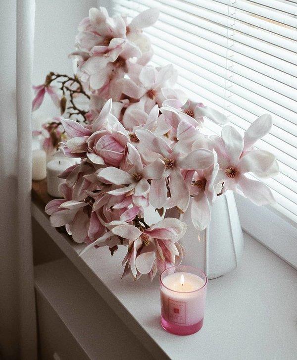Modne kwiaty w tym sezonie