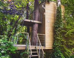 Domek na wodzie czy na drzewie? Oto najdziwniejsze miejsca na wakacje!