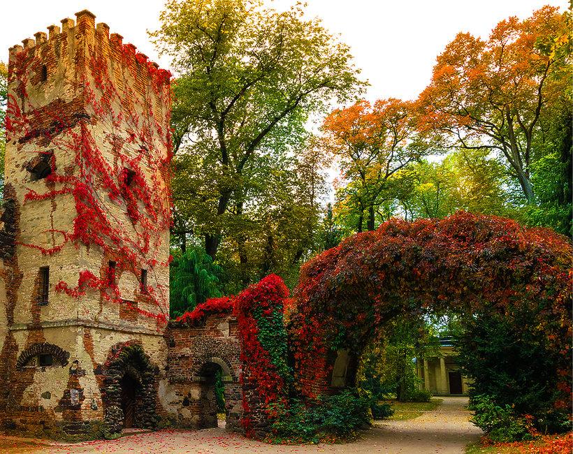 Parki w Polsce - wakacje 2018