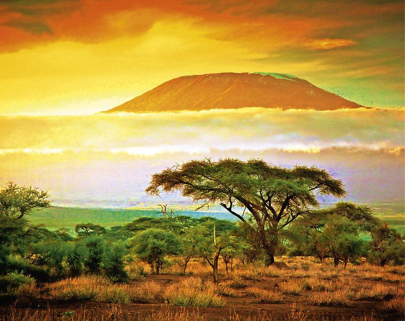 Podróże: safari w Kenii