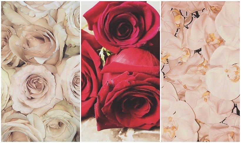 Herbaciane róże, czerwone róże i orchidee