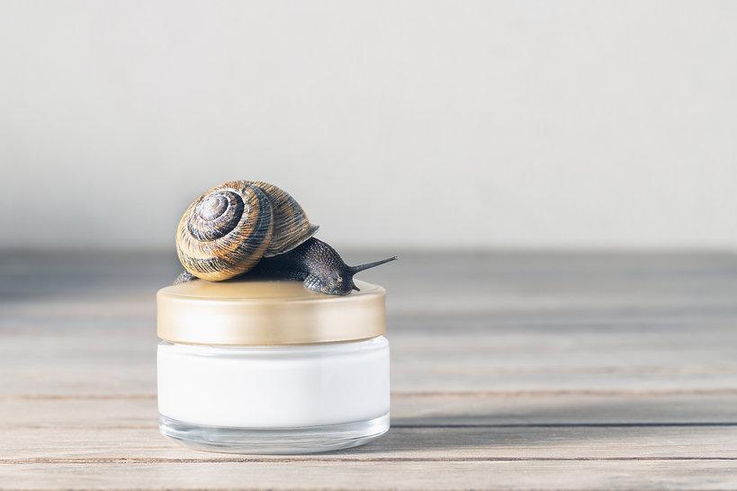 kosmetyki ze śluzem ślimaka