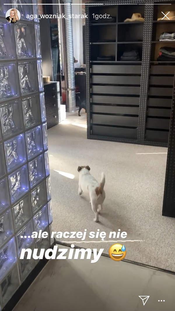 jak Agnieszka Woźniak-Starak spędza kwarantannę w domu
