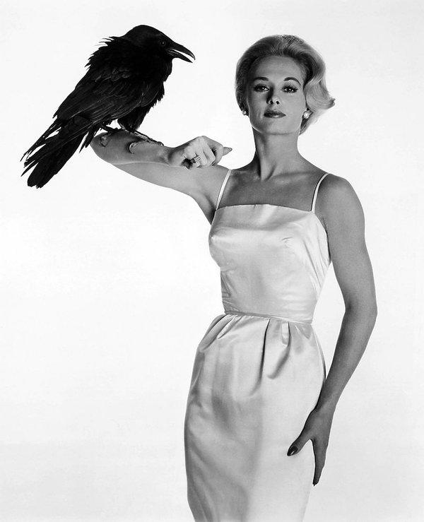 "Tippi Hedren w filmie Alfreda Hitchcocka ""Ptaki"""